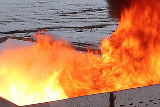 Flammerist